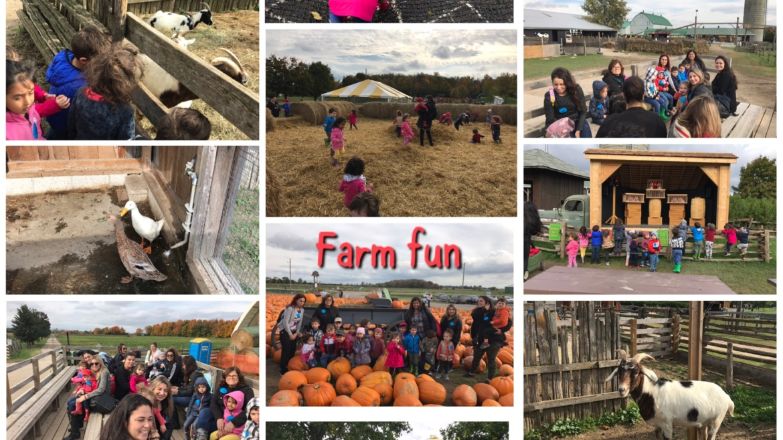 Fall Fun at the Farm