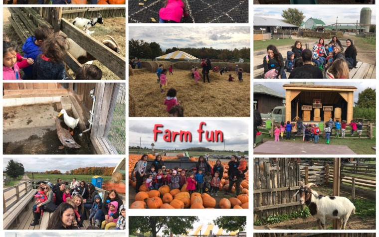 Fall Fun at the Farm